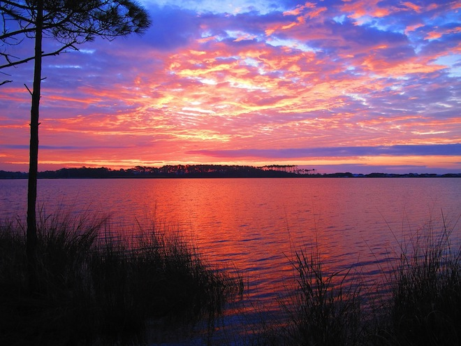 Where to Find National Parks and Wildlife Refuge in FL